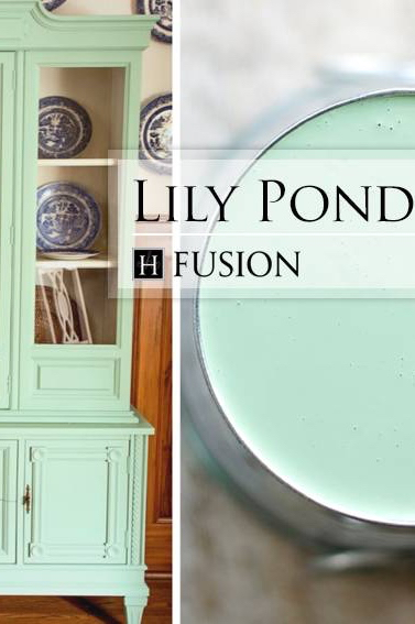 lily-pond-new